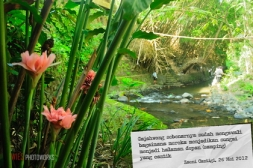 Jogja River Project #3 - Gajahwong river